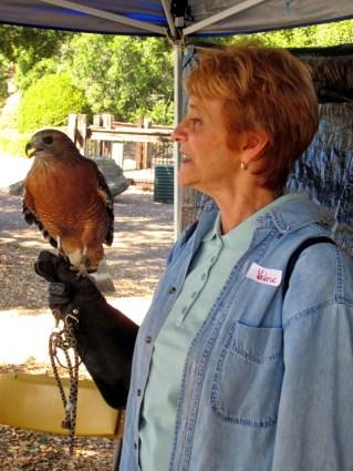 Wildlife Center of Silicon Valley's Valerie Baldwin