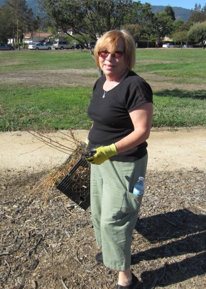 Fall clean-up in the Jeffrey Fontana Memorial Garden (6/6)