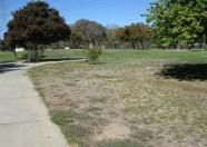 Dead areas