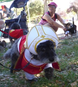 1st place for small dogs was Pope Pup