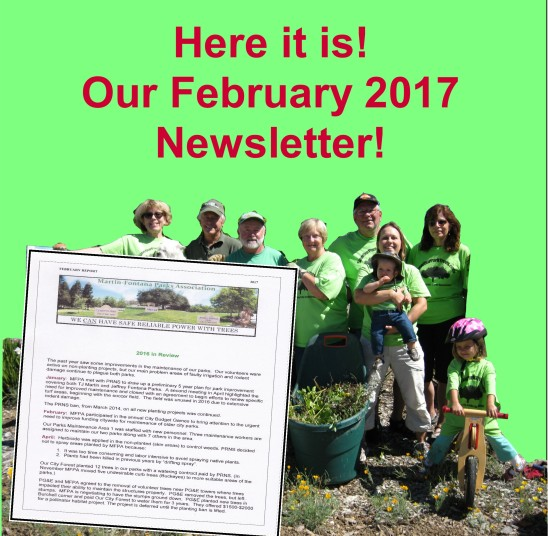 newsletter-feb-2017