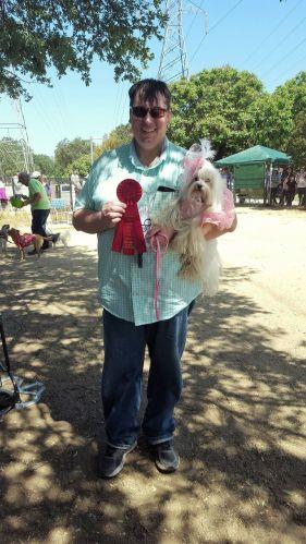 Dog Winner
